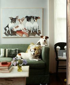 Gone to the dogs | Laura Casey Interiors