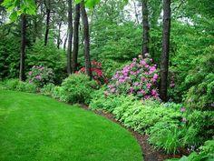 Bildergebnis für die schönsten waldgärten der welt