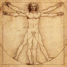 This sketch, and the notes that go with it, show how Leonardo understood the proportions of the human body. Each separate part was a simple fraction of the whole. For example, the head measured from the forehead to the chin was exactly one tenth of the total height, and the outstretched arms were always as wide as the body was tall.