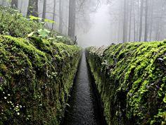 Canal entre Trancas y Nexcoalanco