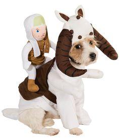 Tauntaun Dog Costume...love it!!!