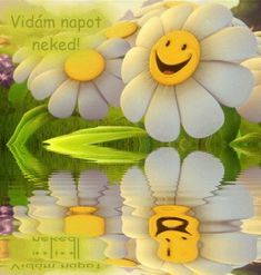 Good Morning Tuesday, Have A Great Day, Smiley, Tweety, Disney Characters, Humor, Art, Art Background, Emoticon
