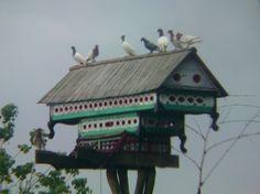dovecote / pigeonhouse of #Randuagung #Jember