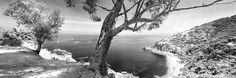 Lover's Cove Panorama, Catalina Island by JMichaelSullivan, via Flickr