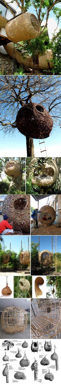 magic #nest