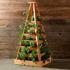 Pflanz-Pyramide, Höhe 120 cm, Breite 56 cm, Länge 56 cm | von Gärtner Pötschke