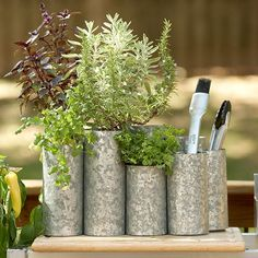 "Fun Containers from Salvaged Containers: Steel Pillars of Herbs ""Elevate your herbs to a new level -- right next to your outdoor kitchen -- with the help of discarded steel rods. Make sure to soften any rough edges before planting!"""