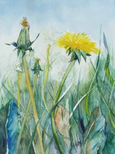 Summer Meadow (c) a dandelion #watercolor by Frank Koebsch,   24 x 32 cm, sold; More information about the watercolor can be found at http://frankkoebsch.wordpress.com/2011/04/26/das-gelb-des-lowenzahns/