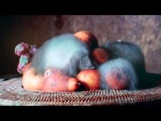 """""""Still Life"""", a bowl of fruit decaying, is a film by Sam Taylor-Wood. The music """"Preservation Divine"""" is by Keith Kenniff. The work can be seen in the Explor. Popular Woodworking, Teds Woodworking, Woodworking Articles, Vanitas, Juan Sanchez Cotan, Time Lapse Photo, Growth And Decay, Time And Weather, Food Artists"""