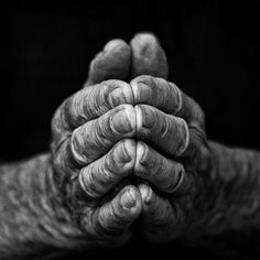 86 Year Old Working Hands - Major Work: Portraits of Power - 86 Year Old Working Hands Black N White, Black And White Pictures, White Art, Hand Photography, Portrait Photography, Emotional Photography, Hand Fotografie, Photo Main, Working Hands