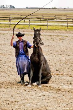 Magyar cowboy cracking whip with sitting horse, Kalocsa, Hungary