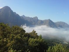 Helderberg mountains,  Somerset West, Western Cape province, South Africa