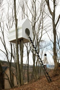 Bird Apartment | iGNANT.de