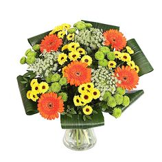 awesome Modern Elegant, Calgary Flowers - New Bouquet Modern Elegant by Calgary Flowers hues of orange Gerbera with yellow and green Chrysanthemums. Surrounded by a circle of Aspidistra leaves to make a modern elegant hand - tied bouquet. , http://sendflowerstocalgary.com/product/modern-elegant/, 79.95