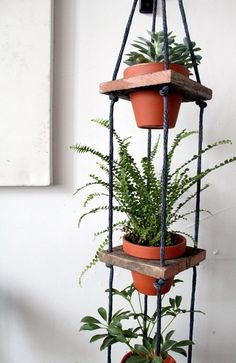 "Tiered Hanging Pots by Design*Sponge Photo editor Laura Miller says, ""I've been hoarding house plants all winter (I think in response to the endless cold weather!) and this would be an awesome way to display them inside. Hanging Pots, Diy Hanging, Spring Projects, Home Projects, Indoor Garden, Indoor Plants, Deco Nature, Decoration Plante, Cactus Y Suculentas"