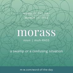Morass: a swamp or a confusing situation.