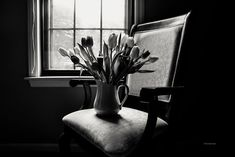 Black and White Photography Flower Art Still Life Tulips