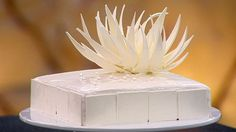 This incredible vanilla-themed dessert from master patissier Adriano Zumbo is full of incredible flavours and textures. Adriano Zumbo, Zumba, Vanilla Syrup, Vanilla Glaze, Zumbo Desserts, Masterchef Australia, Dacquoise, Chiffon Cake, Gastronomia