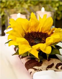 The Perfect Palette: {Sunflowers & Sunsets}: A Palette of Yellow, Chocolate Brown, Chartreuse & Ivory Late Summer Weddings, Yellow Weddings, Wedding Colors, Wedding Flowers, Sunflowers And Daisies, Chelsea Wedding, Amazing Flowers, Real Flowers, Mellow Yellow