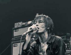 Chiba, Rock Bands, Rocks, Elephant, Photograph, Concert, Birthday, Music, Photography