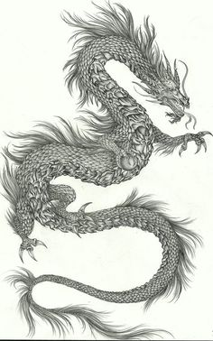 my dragon, new art - See this image on Photobucket.my dragon, new art - See this image on Photobucket. Dragon Tattoo Art, Dragon Tattoo For Women, Japanese Dragon Tattoos, Japanese Tattoo Art, Dragon Artwork, Dragon Tattoo Designs, Chinese Dragon Drawing, Chinese Art, Asian Dragon Tattoo