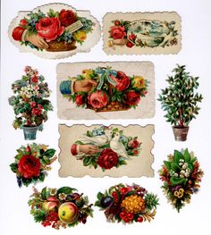 #Victorian #scrap #floral #roses #botanical