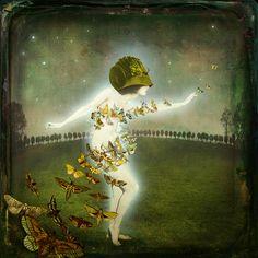 Amor empieza por desasosiego,  solicitud, ardores y desvelos;  crece con riesgos, lances y recelos;  susténtase de llantos y de ruego.  (((extracto de un poema de Sor Juana Inés de la Cruz)))  Arte de Maggie Taylor, 2012