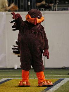 Hokie Bird!