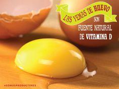 Las yemas de huevo son fuente natural de vitamina D. SAGARPA SAGARPAMX #SOMOSPRODUCTORES