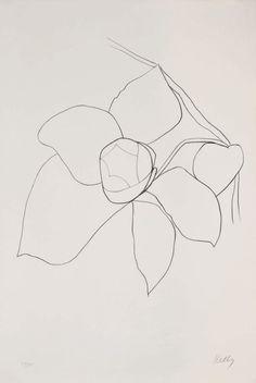 Ellsworth Kelly. Camellia. Rebirth & the awakening.