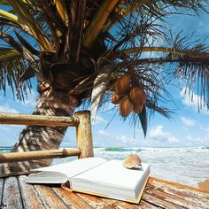 Resorts: We offer a variety of vacations including, Florida vacations, last minute vacations, vacation deals, vacation packages, airfare deals, discount airfare, Hawaii vacations, cruise deals, resorts,  travel, hotels, Mexico vacations, cruise packages, cruise specials, best tour travel, best travel tours, cheap trips, discount vacation packages, group travel tours, all inclusive vacations, vacation package deals, package deal, Las Vegas hotels. Full details at www.thecoastalvacations.com