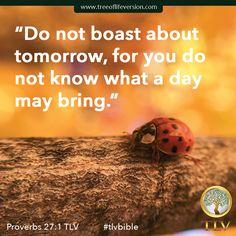 Proverbs 27:1 TLV #tlvbible