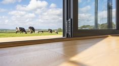 Find out more about the options for thresholds on Origin's Bi-fold Doors & how low thresholds create a seamless transition between outside and in. Garden S, Home And Garden, Seamless Transition, Door Detail, External Doors, Folding Doors, New Builds, Windows, The Originals