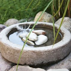 DIY birdbath - hint, if the edges are too wide for birds to grab onto, put stones in the water for them to stand on as shown.
