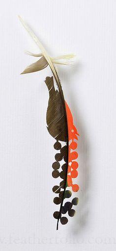 Bird Berry . amazon parrot feather . 2015 . Chris Maynard . featherfolio