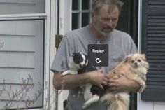 Dozens of dogs rescued from kennel fire