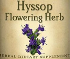 HYSSOP FLOWERING HERB Herbal Liquid Extract Tincture