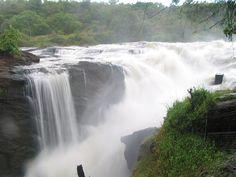 murchison falls..uganda