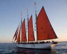 sailboat - Поиск в Google