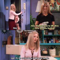 school got me like😂😭 [ - Friends - Jokes Friends Funny Moments, Serie Friends, Friends Scenes, Friends Episodes, Friends Tv Show, Phoebe Friends Quotes, Friends Series Quotes, Ross Geller, Dramas