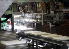 Making tofu at Hodo Soy Beanery