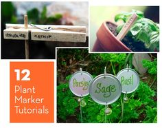 12 DIY Plant Marker Tutorials. Love the chalk board paint and paint pen!