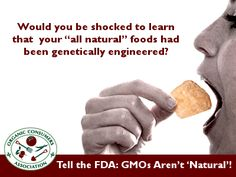 """The Food & Drug Administration (FDA) says """"natural"""" means """"nothing artificial or synthetic … has been included in, or has been added to, a food that would not normally be expected to be in the food."""" So who would guess that food marketed as """"natural"""" contains the engineered genes of insecticide-producing and/or herbicide-resistant bacteria?  TAKE ACTION: Tell the FDA that GMOs Aren't """"Natural""""!"""