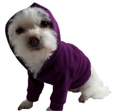 Dog Hoodie Dog Clothes Dog Hoodies Dog por RockinDogsCoolCats