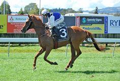 Kisses (NZ) 2009 Ch.m. (Iffraaj (GB)-La Marmalade (AUS) by Marscay (AUS) 1st Taranaki Breeders' S (NZ-G3,1400mT,Hawera)