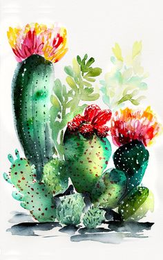 Watercolor painting cactus & aquarellmalkaktus & peinture à l'aquarelle cactus & pintura de acuarela cactus & watercolor painting easy, watercolor painting ideas, watercolor painting for beginners, watercolor painting anime, watercolor painting tut Watercolor Cactus, Watercolor Trees, Abstract Watercolor, Watercolor Illustration, Watercolour Painting, Painting & Drawing, Tattoo Watercolor, Watercolor Animals, Watercolor Background