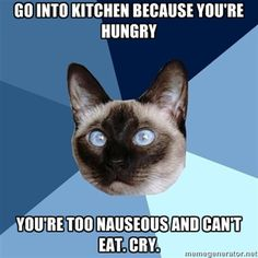 Chronic Illness Cat. Can't tell you how many times I've had this happen! and I've had anti-nausea meds already in me!