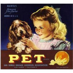 San Dimas, Los Angeles County Pet Cocker Spaniel Dog Orange Citrus Fruit Crate Box Label Art Print