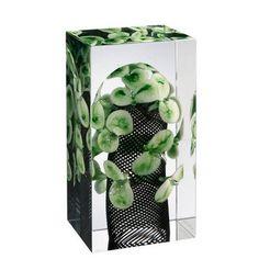 Late spring glass sculpture, by Finnish designer Oiva Toikka, 2008 Glass Cube, Glass Art, Conceptual Design, Glass Vessel, Glass Blocks, Hand Blown Glass, Scandinavian Design, Wind Chimes, Design Art