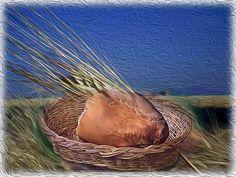 Cesto del pane. Elaborazione Photoshop